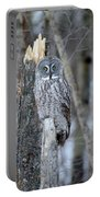 Just Us Tree Trunks Portable Battery Charger
