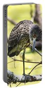 Juvenile Black Crowned Night Heron Portable Battery Charger