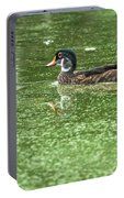 Juvenile Male Wood Duck Portable Battery Charger