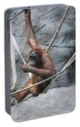 Juvenile Orangutan Portable Battery Charger