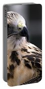Juvenile Swainson's Hawk Portable Battery Charger