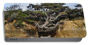 Kalaloch Hanging Tree Portable Battery Charger