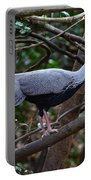 Kalij Pheasant Portable Battery Charger