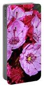 Kalmia Latifolia - Firecracker Mountain Laurel 001 Portable Battery Charger