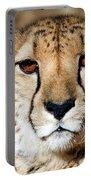 Kamaria Portable Battery Charger