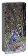 Kangaroo In The Forest Portable Battery Charger
