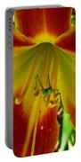 Katydid Surprise Portable Battery Charger