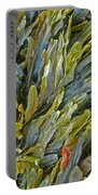 Kelp On A Rock Portable Battery Charger