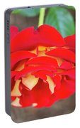 Ketchup And Mustard Rose Portable Battery Charger