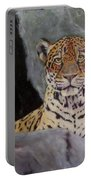 Khensu,  Jaguar Portable Battery Charger