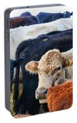Kibler Valley Cows Portable Battery Charger