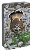 Kildeer And Nest Portable Battery Charger