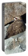 Kildeer On The Jetty  Portable Battery Charger