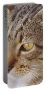 King Cat Portable Battery Charger