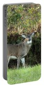 King Of The Forest Portable Battery Charger