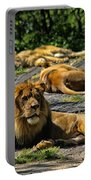 King Of The Pride Portable Battery Charger