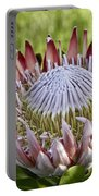 King Protea Portable Battery Charger