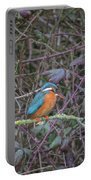 Kingfisher. Portable Battery Charger
