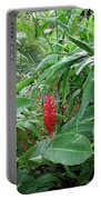 Kingston Jamaica Foliage Portable Battery Charger
