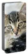 Kitten Looking Portable Battery Charger