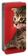 Kitten On Red Portable Battery Charger