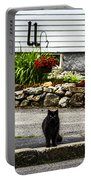 Kitty Across The Street  Portable Battery Charger
