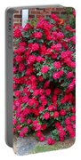 Knockout Red Rosebush Portable Battery Charger
