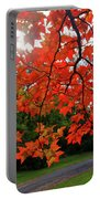 Knox Park 8444 Portable Battery Charger by Guy Whiteley