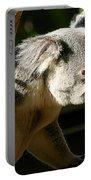 Koala Bear 2 Portable Battery Charger