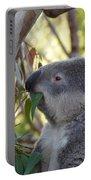 Koala Time Portable Battery Charger