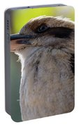 Kookaburra On A Branch Portable Battery Charger