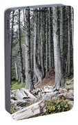 La Push Beach Trees Portable Battery Charger