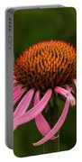 Lacewing On Echinacea Blossom Portable Battery Charger