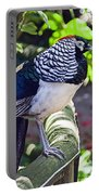 Lady Amherst's Pheasant Portable Battery Charger
