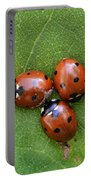 Lady Bugs  Portable Battery Charger