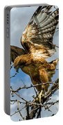 Lady Hawke Portable Battery Charger