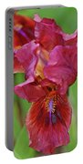 Lady In Red Iris Portable Battery Charger