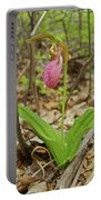 Lady Slipper 2037 Portable Battery Charger