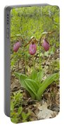 Lady Slipper 2059 Portable Battery Charger