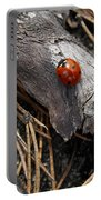 Ladybird Portable Battery Charger
