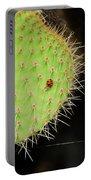 Ladybug On Cactus Portable Battery Charger