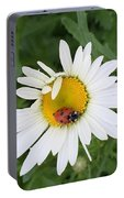 Ladybug On Daisy Portable Battery Charger