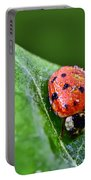 Ladybug With Dew Drops Portable Battery Charger