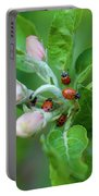 Ladybugs On Apple Blossoms Portable Battery Charger