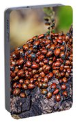 Ladybugs On Branch Portable Battery Charger