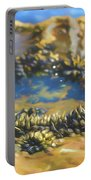 Laguna Beach Tide Pool Pattern 3 Portable Battery Charger