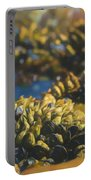 Laguna Beach Tide Pool Pattern 4 Portable Battery Charger