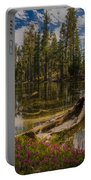 Lake Eleanor Portable Battery Charger