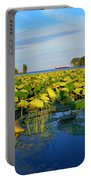Pointe Mouilee Lake Erie Portable Battery Charger