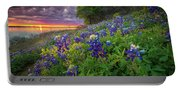 Lake Grapevine Twilight Portable Battery Charger